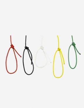 accessory cord image